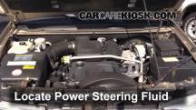 2004 Buick Rainier CXL Plus 4.2L 6 Cyl. Power Steering Fluid