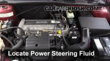 2004 Chevrolet Classic 2.2L 4 Cyl. Power Steering Fluid