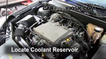 2004 Chevrolet Malibu LS 3.5L V6 Coolant (Antifreeze)