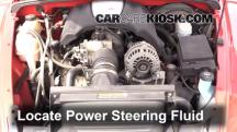 2004 Chevrolet SSR 5.3L V8 Power Steering Fluid