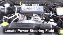 2004 Dodge Dakota Sport 3.7L V6 Crew Cab Pickup (4 Door) Líquido de dirección asistida