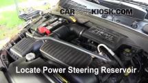 2004 Dodge Durango SLT 5.7L V8 Líquido de dirección asistida