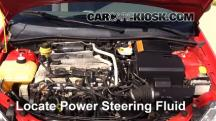 2004 Ford Focus ZTS 2.3L 4 Cyl. Power Steering Fluid