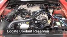 2004 Ford Mustang 3.9L V6 Coupe Coolant (Antifreeze)