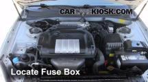 2004 Hyundai Sonata 2.4L 4 Cyl. Fuse (Engine)