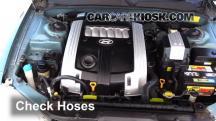 2004 Hyundai XG350 L 3.5L V6 Hoses