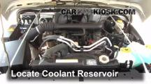2004 Jeep Wrangler Rubicon 4.0L 6 Cyl. Coolant (Antifreeze)