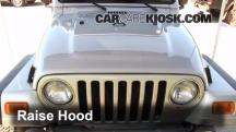 2004 Jeep Wrangler Rubicon 4.0L 6 Cyl. Correas