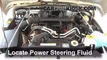 2004 Jeep Wrangler Rubicon 4.0L 6 Cyl. Power Steering Fluid