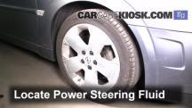 2004 Opel Signum Sport 2.0L 4 Cyl. Turbo Power Steering Fluid