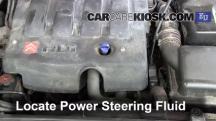 2004 Peugeot 206 XS 2.0L 4 Cyl. Turbo Diesel Líquido de dirección asistida
