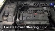 2005 Citroen Xsara SX Hatchback 1.6L 4 Cyl. Power Steering Fluid