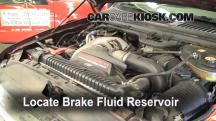 2005 Ford F-250 Super Duty XLT 6.0L V8 Turbo Diesel Crew Cab Pickup (4 Door) Brake Fluid