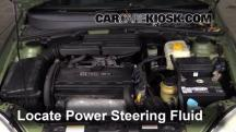 2005 Suzuki Forenza LX 2.0L 4 Cyl. Wagon Power Steering Fluid