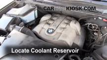 2006 BMW X5 4.4i 4.4L V8 Coolant (Antifreeze)