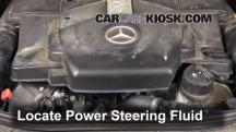 2006 Mercedes-Benz E500 5.0L V8 Power Steering Fluid
