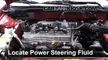 2006 Nissan Sentra S 1.8L 4 Cyl. Power Steering Fluid