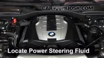 2007 BMW 750Li 4.8L V8 Líquido de dirección asistida
