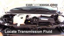 2007 Chevrolet Express 3500 LS 6.0L V8 Standard Passenger Van (3 Door) Líquido de transmisión