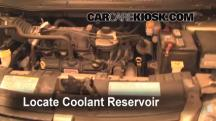 2007 Dodge Grand Caravan SXT 3.8L V6 Coolant (Antifreeze)