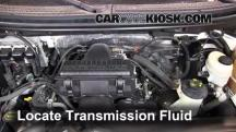 2007 Lincoln Mark LT 5.4L V8 Transmission Fluid