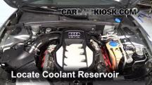 2008 Audi S5 4.2L V8 Coolant (Antifreeze)