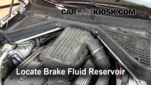 2008 BMW X5 3.0si 3.0L 6 Cyl. Brake Fluid