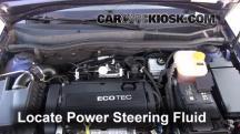 2008 Saturn Astra XR 1.8L 4 Cyl. (4 Door) Power Steering Fluid