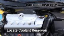 2008 Volkswagen Beetle S 2.5L 5 Cyl. Hatchback Coolant (Antifreeze)