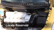 2008 Volkswagen Beetle S 2.5L 5 Cyl. Hatchback Windshield Washer Fluid