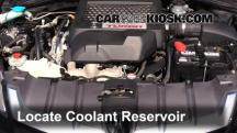 2009 Acura RDX 2.3L 4 Cyl. Turbo Coolant (Antifreeze)