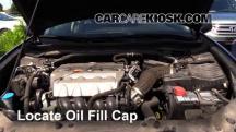 2009 Acura TSX 2.4L 4 Cyl. Oil