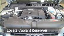 2009 Audi A4 Quattro 2.0L 4 Cyl. Turbo Coolant (Antifreeze)