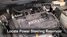 2009 Chevrolet Aveo LS 1.6L 4 Cyl. Líquido de dirección asistida