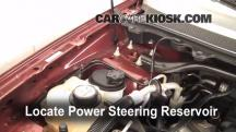 2009 Ford Flex SEL 3.5L V6 Power Steering Fluid