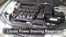 2009 Hyundai Sonata GLS 2.4L 4 Cyl. Power Steering Fluid