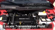 2009 Pontiac G3 1.6L 4 Cyl. Transmission Fluid