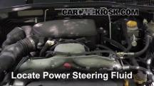 2009 Subaru Outback 2.5i Limited 2.5L 4 Cyl. Power Steering Fluid