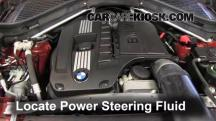 2010 BMW X6 xDrive35i 3.0L 6 Cyl. Turbo Power Steering Fluid