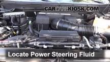 2010 Ford F-150 SVT Raptor 6.2L V8 Power Steering Fluid