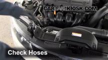 2010 Kia Forte EX 2.0L 4 Cyl. Sedan (4 Door) Hoses