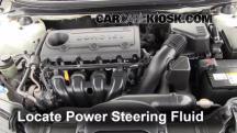 2010 Kia Forte EX 2.0L 4 Cyl. Sedan (4 Door) Líquido de dirección asistida