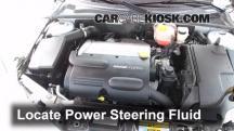 2010 Saab 9-3 2.0T 2.0L 4 Cyl. Turbo Sedan Power Steering Fluid