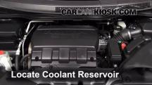 2011 Honda Odyssey EX-L 3.5L V6 Coolant (Antifreeze)