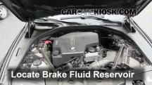 2012 BMW 528i xDrive 2.0L 4 Cyl. Turbo Brake Fluid