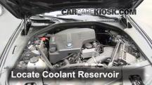 2012 BMW 528i xDrive 2.0L 4 Cyl. Turbo Coolant (Antifreeze)