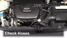 2012 Kia Rio5 LX 1.6L 4 Cyl. Hoses