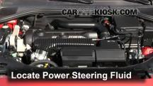 2012 Volvo S60 T5 2.5L 5 Cyl. Turbo Power Steering Fluid
