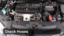 2013 Acura ILX 2.0L 4 Cyl. Hoses