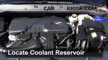 2013 Buick Verano 2.4L 4 Cyl. FlexFuel Coolant (Antifreeze)